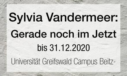 Sylvia Vandermeer – Gerade noch im Jetzt